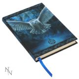 Anne Stokes Awaken your Magic journal